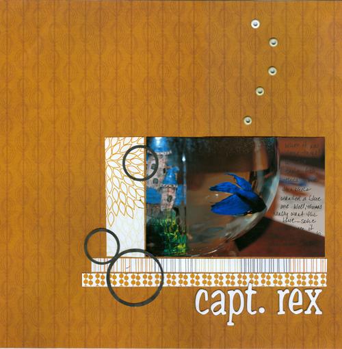 Capt-rex-{SB+}-297K