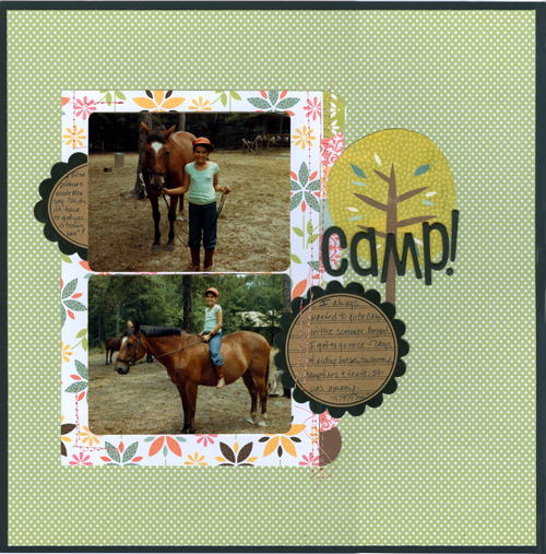 Camp-{SB+}-and-{Shimelle-SFAN}-335K