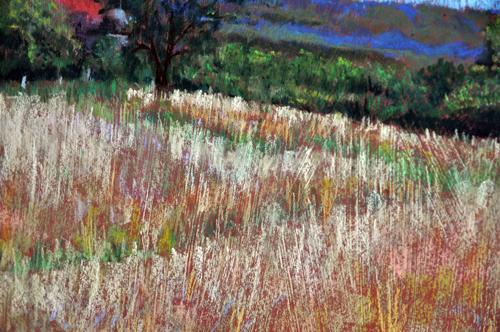 Landscape-Jan14-closeup