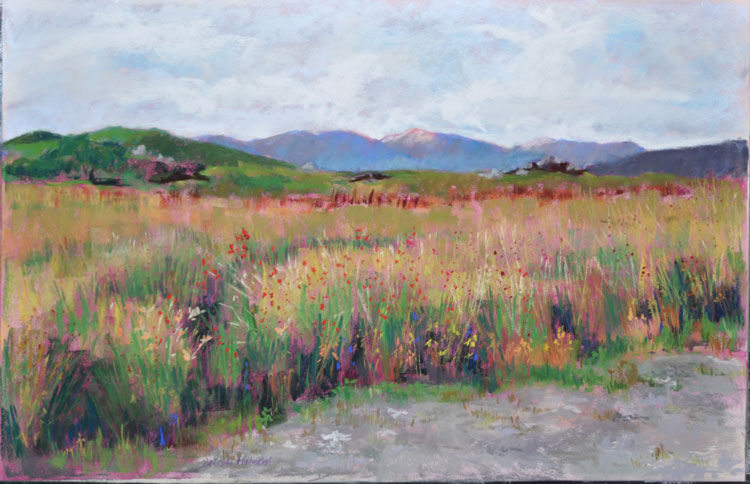 Scottish Meadow - pastel on UArt - Deborah Mahnken