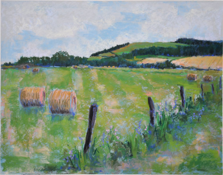 Pasture, Stirling - Pastel on UArt - Deborah Mahnken 2015